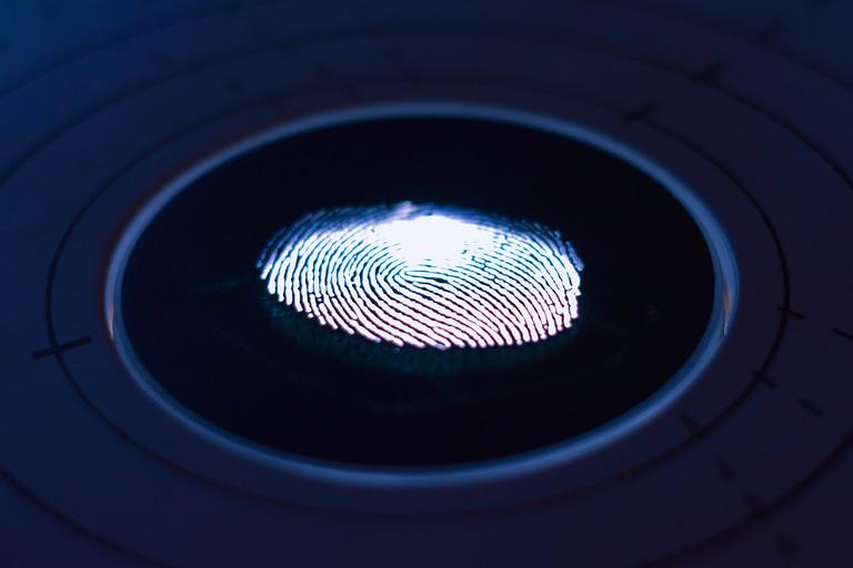 Biometric fingerprint